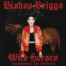Wild Horses (Thundatraxx & The SKX Remix)/Bishop Briggs