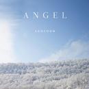 Angel/Sooyoon