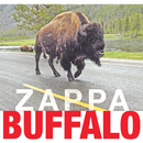 Buffalo (Live At Buffalo Memorial Auditorium/1980)/Frank Zappa