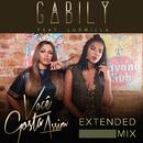 Você Gosta Assim (Extended Mix) (feat. Ludmilla)/Gabily
