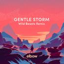Gentle Storm (Wild Beasts Remix)/Elbow