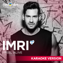 I Feel Alive (Karaoke Version)/IMRI