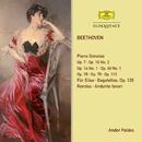 Beethoven: Piano Sonatas & Variations/Andor Foldes
