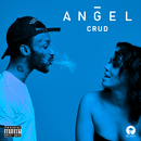 Crud/Angel