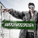 Hakkebakkeskogen 2017/TIX, Meland x Hauken