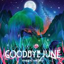 Magic Valley/Goodbye June