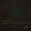 There's A Light That Enters Houses With No Other House In Sight (feat. Franz Wright, Christian Fennesz)/David Sylvian