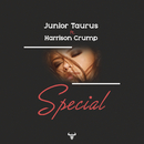 Special (feat. Harrison Crump)/Junior Taurus