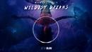 Wildest Dreams (feat. Breana)/Marcelo CIC