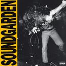 Louder Than Love/Soundgarden