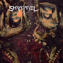 The Virus Conspires/Shrapnel