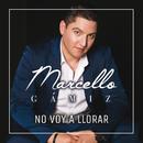 No Voy A Llorar/Marcello Gámiz