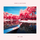 Get Low/Zedd, Liam Payne