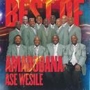 Best Of/Amadodana Ase Wesile
