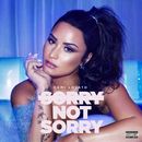 Sorry Not Sorry/Demi Lovato