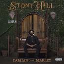 "Stony Hill/Damian ""Jr. Gong"" Marley"