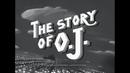 The Story Of O.J./JAY Z
