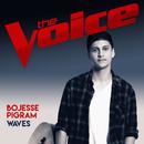 Waves (The Voice Australia 2017 Performance)/Bojesse Pigram