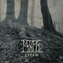 Hrēow/Ashes