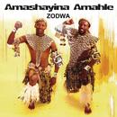 Zodwa/Amashayina Amahle