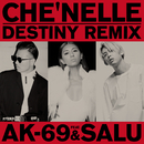 Destiny (Remix) feat. AK-69 & SALU/シェネル, TEE, LEO