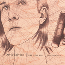 Died In The Wool - Manafon Variations/David Sylvian