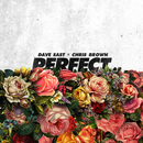 Perfect (feat. Chris Brown)/Dave East
