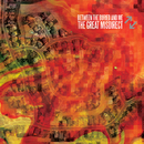 The Great Misdirect/Between The Buried And Me