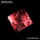 Hot Water (3LAU DNB Remix) (feat. Victoria Zaro)/Audien, 3LAU