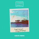 I Don't Love You (I'm Just Lonely) (Kokiri Remix)/Junge Junge