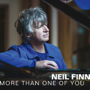 More Than One Of You/Neil Finn