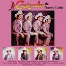 Amor Ciego/Cardenales De Nuevo León