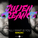 All I Want Is You (Remixes)/Julien Creance