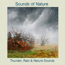 Thunder, Rain & Nature Sounds/Sounds Of Nature