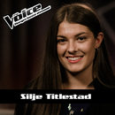 Wake Me Up/Silje Titlestad