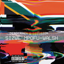 Democracy & Delusion/Sizwe Mpofu-Walsh