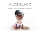 What A Wonderful World/Aloe Blacc