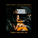 Arms Around Me (feat. Digital Farm Animals)/Hook N Sling