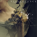 Imperfection/Evanescence