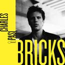 Bricks/Charles Pasi