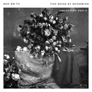 Too Good At Goodbyes (Snakehips Remix)/Sam Smith, Snakehips