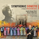 Symphonic Soweto: A Tribute To Nelson Mandela (feat. KwaZulu-Natal Philharmonic, Angelique Kidjo)/Wouter Kellerman, Soweto Gospel Choir