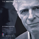 The Beethoven–Willems Collection, Pt. 1/Gerard Willems