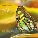 Bach Piano Transcriptions/Antony Gray