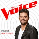 True Colors (The Voice Performance)/Brendan Fletcher