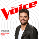 Whipping Post (The Voice Performance)/Brendan Fletcher