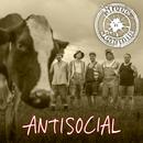 Antisocial (English Version)/Steve 'n' Seagulls