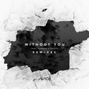 Without You (Remixes) (feat. Sandro Cavazza)/Avicii