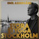 Stora stygga Stockholm/Emil Assergård