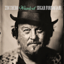Wanted (The Best Collection)/Zucchero